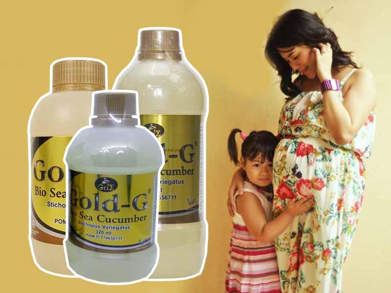 Bahaya Jelly Gamat Gold G