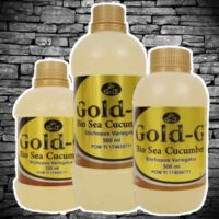 Gold G Bio Sea Cucumber Asli