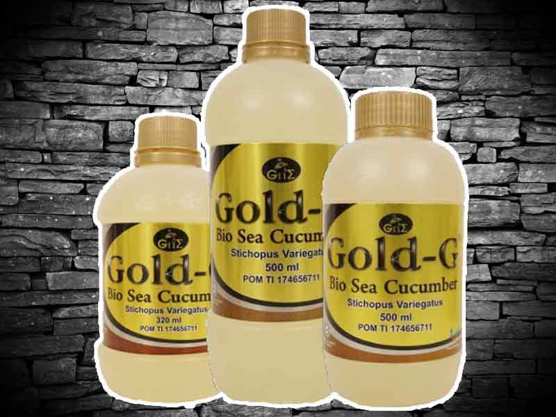 Gold G Bio Sea Cucumber Asli