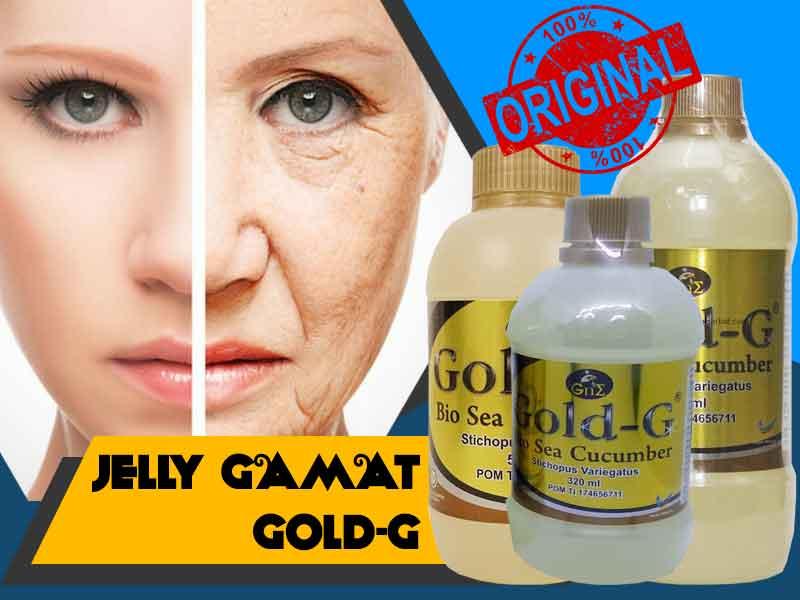 Manfaat Jelly Gamat Gold