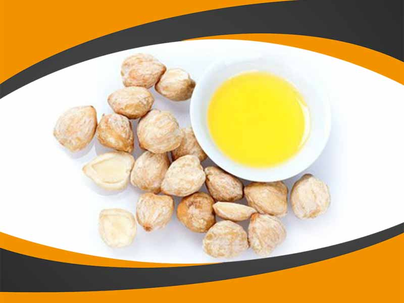 Minyak Kemiri Al Khodry Palsu