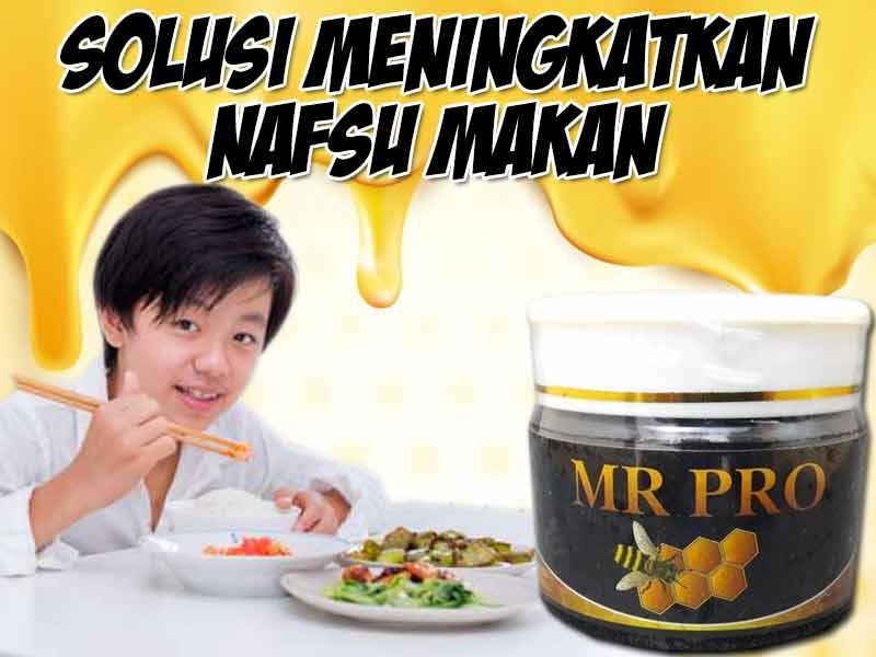 mr-pro-hwi-untuk-anak