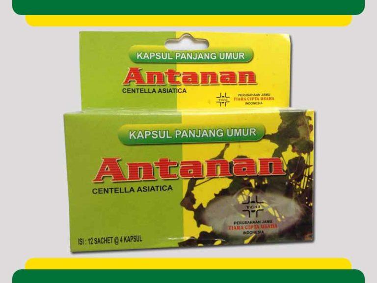 Kapsul-Antanan-Asli