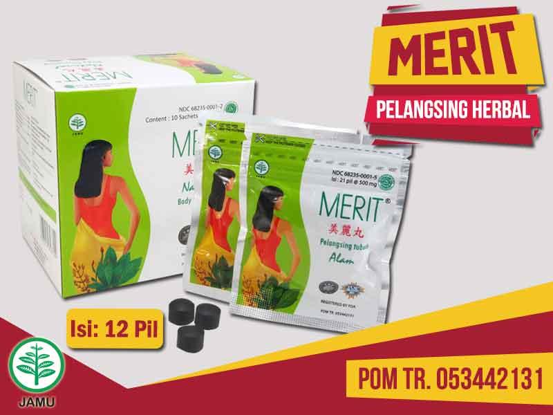 Review Merit